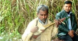 গান গেয়ে সংসার চালান প্রতিবন্ধী রইজ উদ্দিন