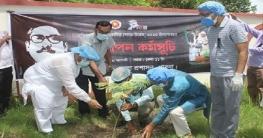 মুজিববর্ষ ও জাতীয় শোক দিবস উপলক্ষে পাবনা জেলা প্রশাসনের বৃক্ষরোপণ