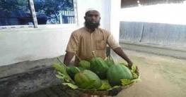 সুজানগরে পেঁপে চাষ করে সাবলম্বী কৃষক