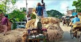 চাটমোহর-পাবনা সড়কে পাটের হাট, জনদূর্ভোগ চরমে