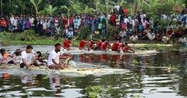 চাটমোহরে গ্রামবাংলার ঐতিহ্যবাহী ভেলাবাইচ প্রতিযোগিতা
