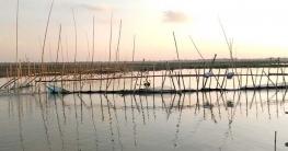 ভাঙ্গুড়ায় সুতিজালের বাঁধ আবাদ নিয়ে শঙ্কায় কৃষক