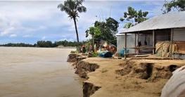 পাবনায় নদীগর্ভে অর্ধশতাধিক বসতভিটা, দিশেহারা মানুষ
