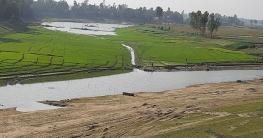 চলনবিলের ১৬টি নদী এখন মৎস্য খামার ও ফসলি জমিতে পরিণত